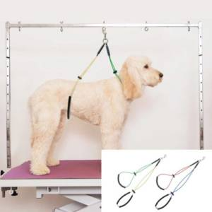 Features of a Good Dog Grooming Table