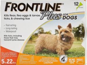 Can you put flea medicine on your dog after a bath