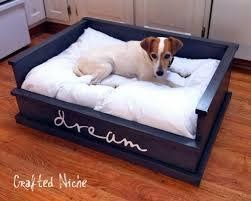 types of dog bed
