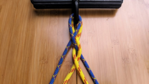 new design of dog leash